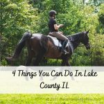4 Things You Can Do In Lake County IL