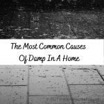 The Most Common Causes Of Damp In A Home