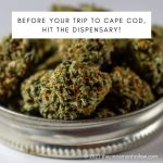 Before Your Trip To Cape Cod, Hit The Dispensary!